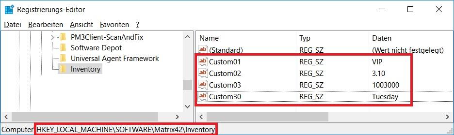 Registry_Matrix42_Inventory_Custom